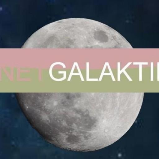 GalacticaNet